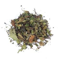Thé blanc fleurs de sureau menthe feuilles