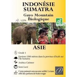 Café Indonésie Sumatra bio